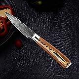 DANHUI VG10 Cuchillo de Damasco Cuchillo de Cocina de Acero Inoxidable con Alto Contenido de Carbono Cuchilla para rebanar Utilidad 3.5 in Paring Knife
