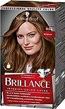 Brillance Intensiv-Color-Creme Haarfarbe 864 Rehbraun Stufe 3, 3er Pack(3 x 160 ml)