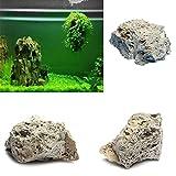 Hinmay Pierre ponce de décoration pour aquarium, roche naturelle, 9-15cm