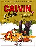 Calvin et Hobbes, tome 20 - Il y a des trésors partout !