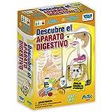 Toy Partner-Artec El Aparato digestivo, Multicolor (96424)