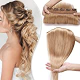 SEGO Extension Cheveux Monobande a Clip Rajout Naturel [ Volume Epais ] - 40 CM 27#Blond Foncé - Meche Vrai Humains Froid Remy (Une Piece 5 Clips)