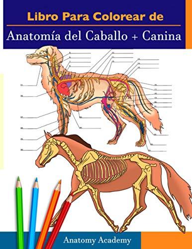 Libro para colorear de Anatomía del Caballo + Canina: 2-en-1 Compilación | Libro de colores de aut