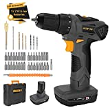 DETLEV PRO Cordless Drill Driver 21V Electric Screwdriver 2 Speed Max Torque 372In-lbs 43pcs Accessories 1.5Ah Lithium Ion with LED, 8104