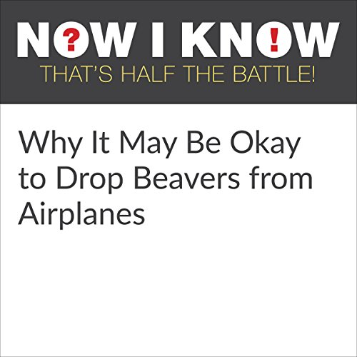 Why It May Be Okay to Drop Beavers from Airplanes cover art