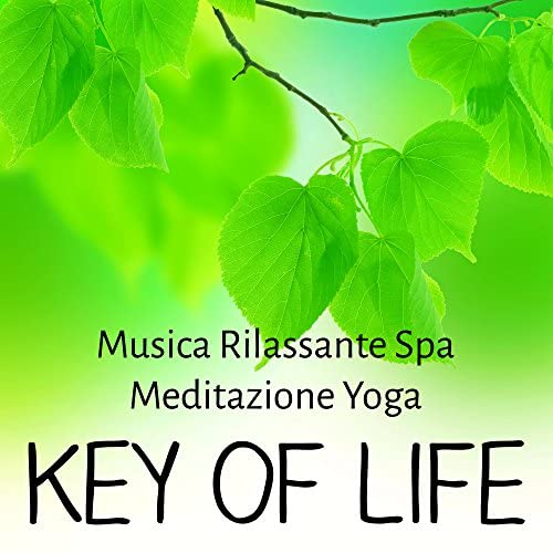 Spa Music Unlimited & Relaxing Music Spirit & Daily Meditation Music Society