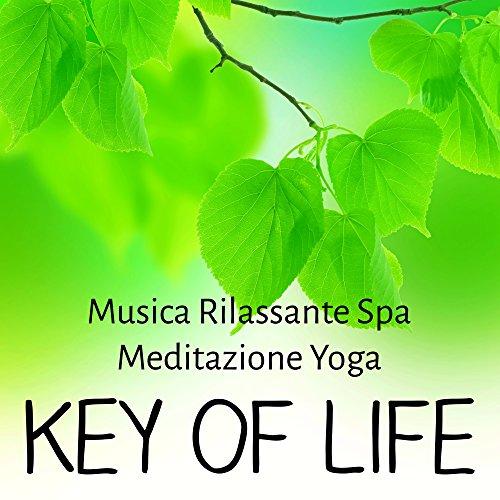 Key of Life - Musica Rilassante Spa Meditazione Yoga per Tecniche di Rilassamento Massaggi Benessere e Reiki Terapia