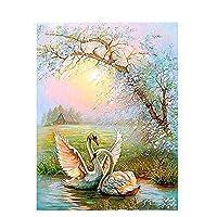 白鳥DIY絵画番号による現代書道絵画アクリル着色番号による家の装飾アートワーク40x50cmx1(フレームなし)