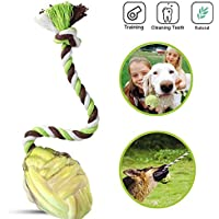 PetBase Dog Aggressive Chewers Toys