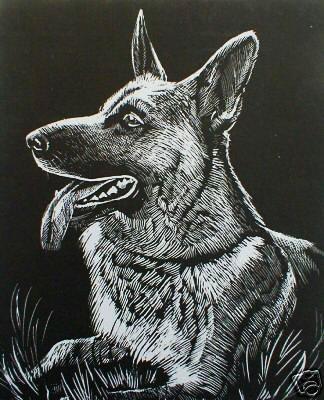 WASO-Hobby - 4er Scrapy Kratzbilder Set - Hunde Motive / Silber *Groß*