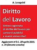Diritto del lavoro: Sintesi ragionata di Diritto del lavoro per concorsi pubblici e esami universitari (Italian Edition)