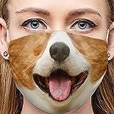 Pitashe Erwachsene Mundschutz Lustig Waschbar Multifunktionstuch Lustige Motive Atmungsaktiv Wiederverwendbar Halstuch Stoff Bandana, Mund und Nasenschutz