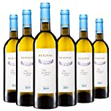CHATEAU DE REIGNAC - Vin Blanc - millésime 2019 - LOT de 6 bouteilles de 75cl - Sauvignon Blanc/Sémillon - blanc sec - AOC Bordeaux Blanc