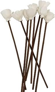 diffuser flower sticks
