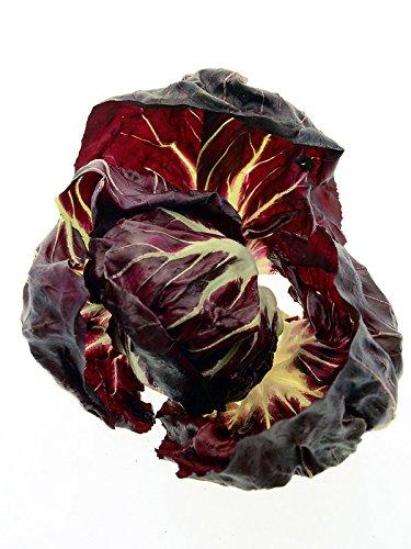 Radicchio 'Palla Rossa' (Cichorium intybus var. foliosum) 200 Samen