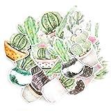 Pegatinas Decorativas de Acuarela | Pegatinas de cactus y plantas carnosas | Vinilos decorativos impermeables | 22 Stickers | Pegatinas para Portátil Botella Álbum | Regalos para niños y adultos