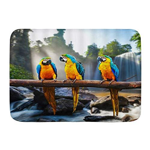 OPQRSTQ-O Badteppich Teppich rutschfest,Papagei Niedliche Papageien Vögel Blau Gelb Federbaum AST Wasserfall Felsen Grüne Pflanzen Sonnenlicht Natur Szenisch,Badteppiche Weiche,29.5
