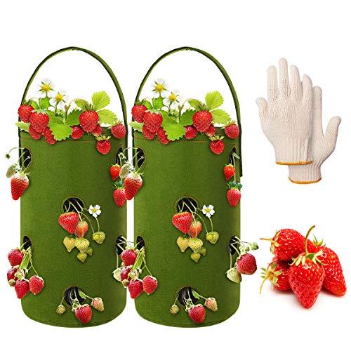 ANBET 2 Packs Erdbeere Pflanzsack, Filz Hängender Erdbeerpflanzer Kulturtasche mit 11 Löchern mit 1 Paar Handschuhen für Pflanzen/Kräuter/Blumen