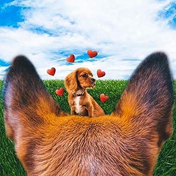 Puppy Love (feat. Chris Titan)