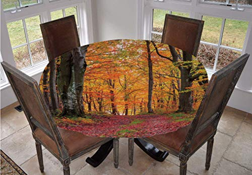 Angel Bags Autumn Round Tablecloth,Fall Forest with Shady Deciduous Trees and Faded Leaf Magic Woodland Picture Polyester Table Cover,70 Inch,for Dining Room and Party Apricot Brown Red