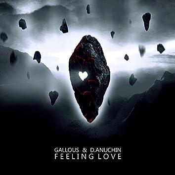 Feeling Love EP