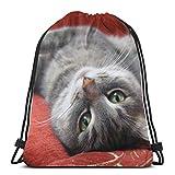 Bozal de gato animales domésticos animales personalizados con cordón para el hombro, bolsa de gimnasio, mochila de viaje, gimnasio ligero para hombre y mujer, 16 x 14 pulgadas