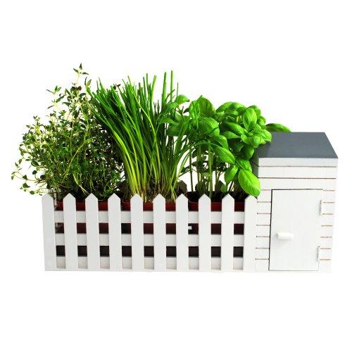 BBTradesales - Set Mini Giardino per Interni
