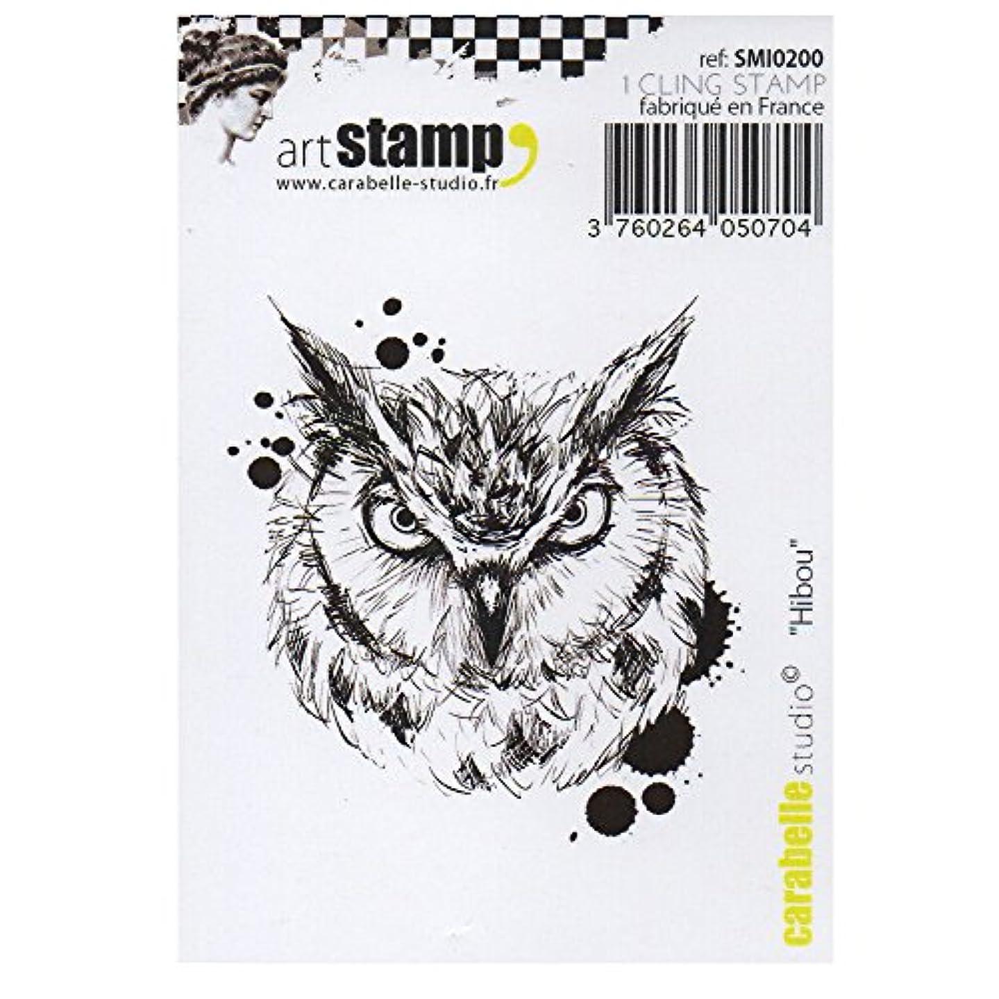 Carabelle Studio SMI0200 Cling Stamp - Hiboux (Owl)