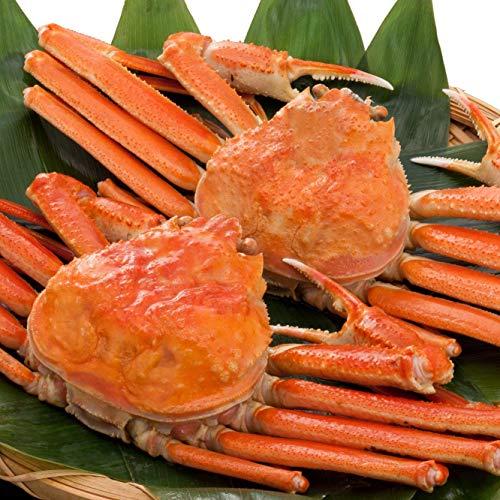 日本海市場 訳あり松葉ガニ(ズワイガニ)姿 中サイズ2枚(ボイル)(2枚で1.2kg前後)「本物」の松葉ガニを産地直送でお届けします 1落ち程度