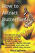 How to Attract Butterflies: It's fun and easy to make your yard Butterfly Friendly. Learn how to get their attention with bright colored plants, sunny areas, wind protection, butterfly spas, and more…