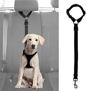 Segle Cintur/ón de Seguridad para Perro con Cadena de Metal para Coche a Prueba de mordiscos arn/és Universal Correa de Seguridad para Perros y Gatos
