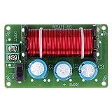 SALUTUYA Módulo de Bricolaje Distribuidor de frecuencia Subwoofer Crossover Filtros Crossover de Graves de Alta Potencia para DIY KTV Etapa Altavoz Divisor de frecuencia