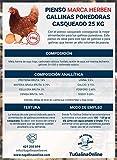Pienso Casqueado Gallinas Ponedoras, Saco de 25 Kg | Pienso de 1º Calidad, Rico en Nutrientes y...
