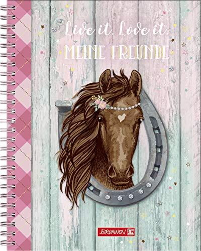 Brunnen Freundebuch Ponylove Pferde - Meine Freunde - mit Stickern Fans of Earth