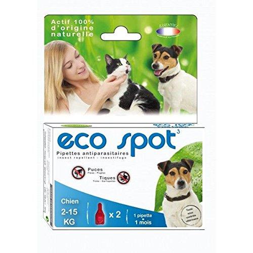 agecom–Eco Spot N ° 3kleine Hunde
