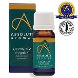 Absolute Aromas Aceite Esencial Geranio Egipcio 10ml - 100% puro, natural, sin diluir, vegano, libre de crueldad animal - Para usar en difusores y mezclas de aromaterapia