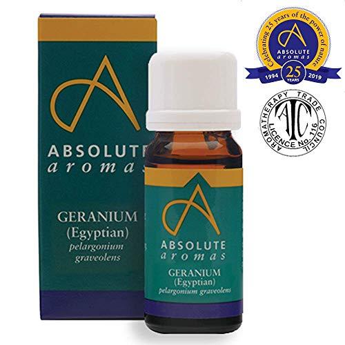 Absolute Aromas Geranio Aceite Esencial Egipcio 10 ml – 100% puro, natural, sin diluir, vegano y libre de crueldad – Para uso en difusores y mezclas de aromaterapia