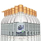 Hand Sanitizer ALCOHOL-FREE Gel for All Skin Types 16.9 Oz (500 mL) | Made in USA | Aloe Vera and Moisturizer for Soft Hands | 202.8 Oz (pack of 12) with Pump