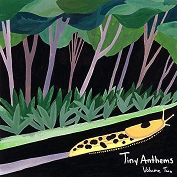 Tiny Anthems, Vol. 2