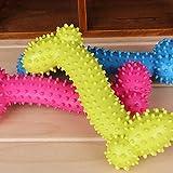 Adorable jouet de détente pour chien en forme d'os en caoutchouc Jouets à mâcher Couleur aléatoire Non toxique