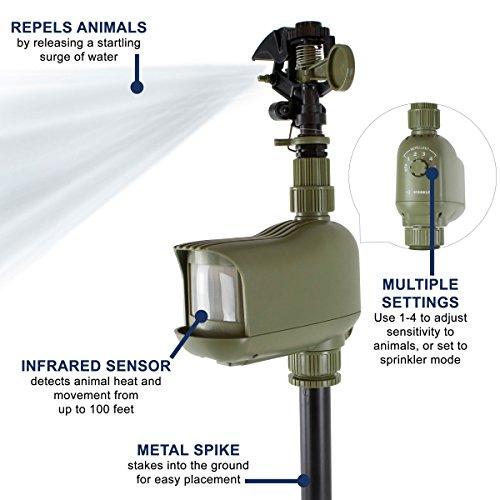 Havahart 5277 Motion-Activated Animal Repellent & Sprinkler, 1 Pack,green