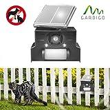 Hunde- und Katzenscheuche HKS Solar