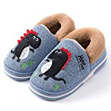 Zapatillas de Estar por Casa para Niños Zapatos Invierno Niñas Pantuflas Dinosaurio Bebé(Azul,30/31 EU)