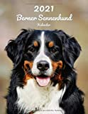 2021 Berner Sennenhund Kalender: 123 Seiten, DIN A4 | 14 Monate Kalender | Terminplaner | Tagebuch | Terminkalender | Organizer für Hundeliebhaber