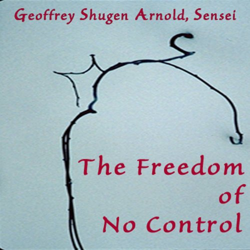 The Freedom of No Control audiobook cover art