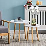 <span class='highlight'><span class='highlight'>CLIPOP</span></span> Coffee table Stacking End Tables Set of 2 Round Side Tables Modern Nest of Tables for Living Room Bedroom Furniture