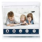 Erigeron Waterproof Mattress Protector Hypoallergenic Queen Size Breathable Cover, Vinly Free, 60''x 80''