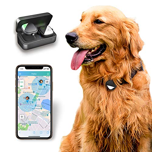 PetFon Pet GPS Tracker