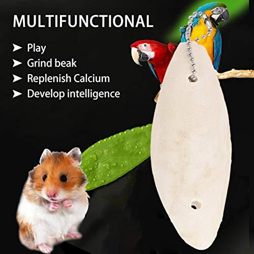 POPETPOP Bird Cuttlebone - Cuttlefish Bones Hanging Pendant Parrot Toy for Bird,Parakeets, Finches, Canaries, 3 Pcs Parakeet Cuttlebone Holder