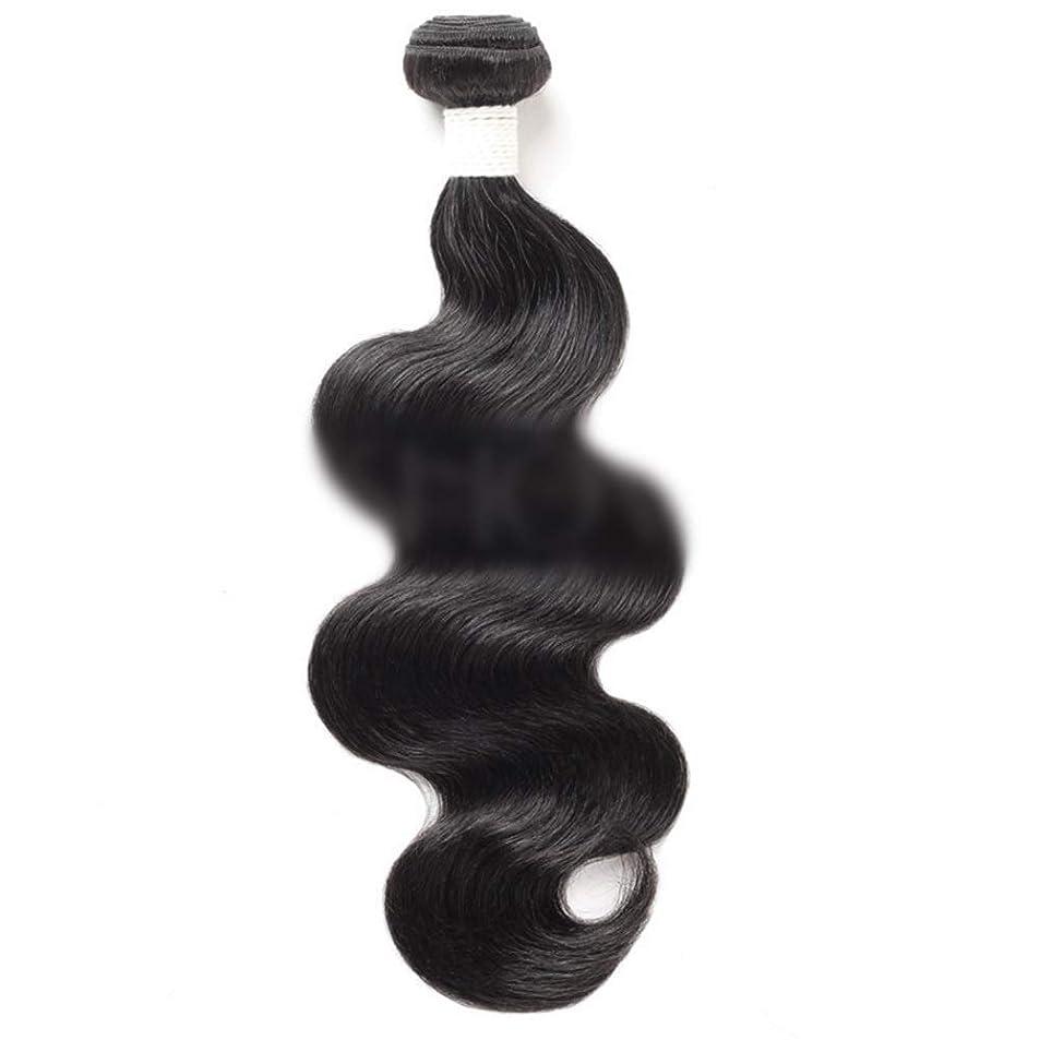 HOHYLLYA 女性の髪の実体波人間の髪の毛の束未処理のブラジルの実体波ヘアエクステンションナチュラルカラー(10